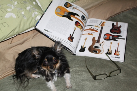 Pippi is caught reading 2000 Guitars